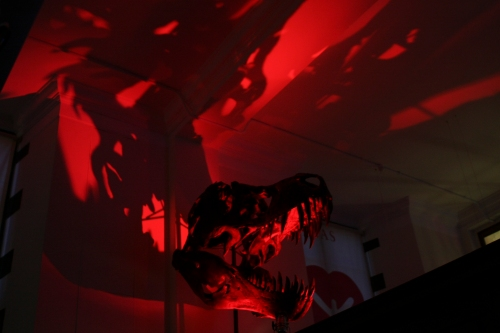 A dinosaur skull in dim red light