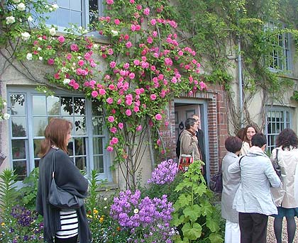 people gathering outside a building covered in climbing plants