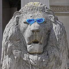 A stone lion outside the Fitzwilliam Museum in Cambridge rocking a pair of blue plastic sunglasses