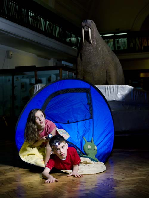 Children in a tent in a museum at night