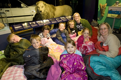 A group of kids in a museum in sleeping bags with a stuffed lion