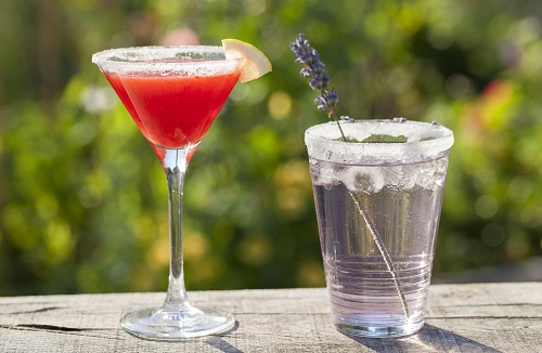 Two cocktails in a garden, one with a sprig of lavender
