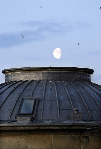 a moon rising at dusk above a museum roof