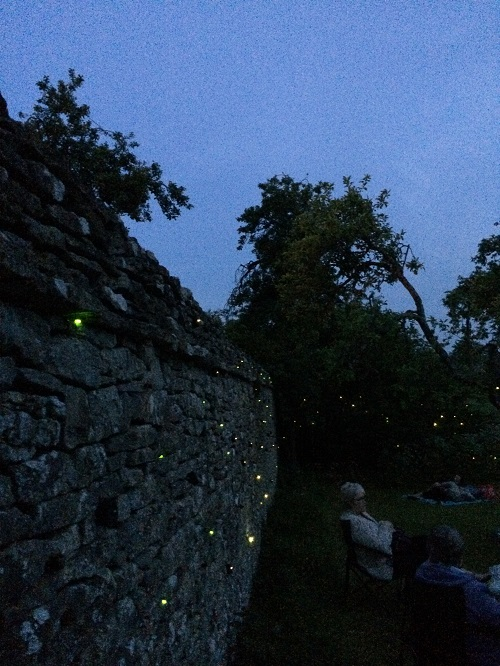 green glowing LEDs around a stone wall outdoors